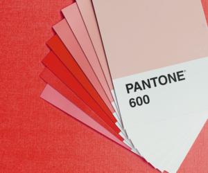Tutoriel : Les couleurs Pantone dans Adobe